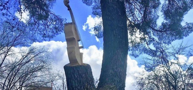 Otro árbol seco, otra escultura para Guadalajara
